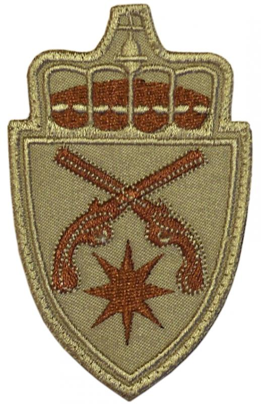 895th military police company patches