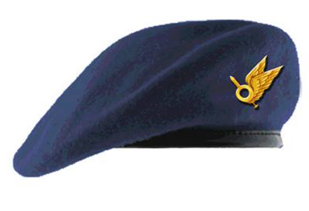 WorldMilitary - General Air Force beret Ukraine