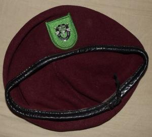 10th Special forces group support  detachment  ( Airborne) beret