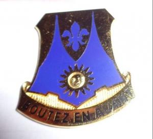 356th Infantry regiment