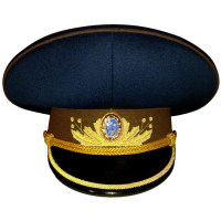 Daily Cap for Generals of Armed Forces of Ukraine