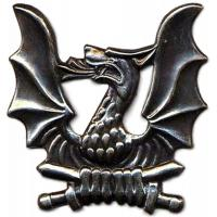 Badge Dragoon Training Battalion of Lithuanian Grand Duke Butigeydisa. Armed Forces Lithuania