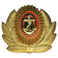 Officer's Badge of the Navy Coastal Forces of the Russian Federation