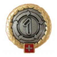 1st Logistics Brigade Beret Badge. Switzerland Armed Forces