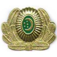 Cockade of the Armed Forces of Turkmenistan #3