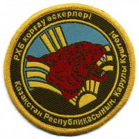 Radiation, chemical and biological protection of the Armed Forces of the Republic of Kazakhstan