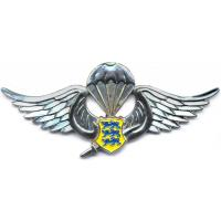 Special Operations Group (SOG) Parachutist wings Badge
