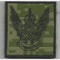 Special Operations Battalion pocket badge