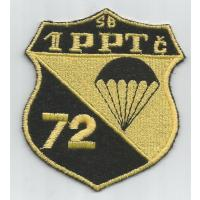 1st company of 72nd Special Force brigade( obsolute)