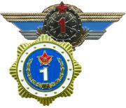 Qualification Ribbons, Badges